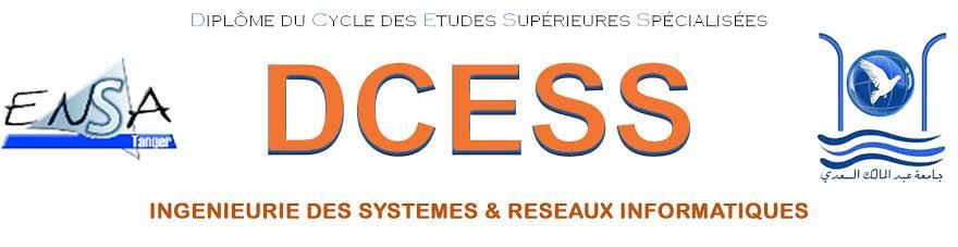 DCESS : Ingénierie des Systèmes et Réseaux Informatiques (ISRI) Logo